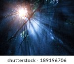 fog in the mysterious... | Shutterstock . vector #189196706