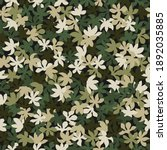 Seamless Pattern Camouflage...