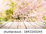 Empty wooden table in sakura...