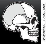 skull head illustration....   Shutterstock .eps vector #1892334205