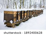 Beehives Boxes In Wintertime In ...