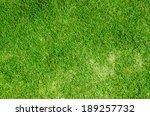 green grass background texture | Shutterstock . vector #189257732