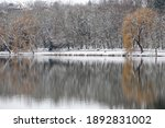 baranya  hungary   january 2021 ... | Shutterstock . vector #1892831002