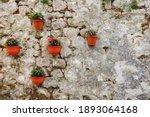 Flower Pots With Indoor Flowers ...
