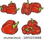 pepper paprika set illustration ...   Shutterstock .eps vector #1893253888