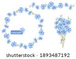 set of blue chicory flowers ... | Shutterstock .eps vector #1893487192