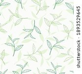 fresh green tea leaves vector... | Shutterstock .eps vector #1893529645