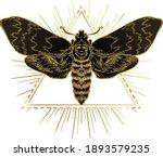 golden moth over sacred... | Shutterstock .eps vector #1893579235