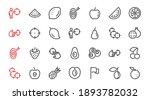 fruit icon set  vector lines ...   Shutterstock .eps vector #1893782032
