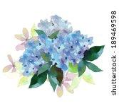 watercolor style vector... | Shutterstock .eps vector #189469598