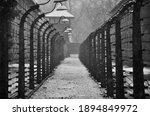 Auschwitz Concentration Camp ...