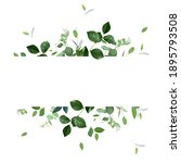 herbal horizontal vector frame. ... | Shutterstock .eps vector #1895793508
