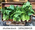 Fresh Green Organic Japanese...