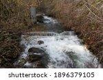 Mormon Ravine Creek Along The...