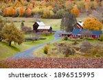 Autumn Fall Foliage In New...