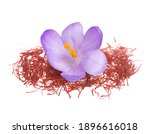 flower crocus and dried saffron ... | Shutterstock . vector #1896616018