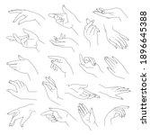 elegant and tender hands with... | Shutterstock .eps vector #1896645388