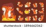 cartoon squirrel. wild wooden... | Shutterstock .eps vector #1896662362