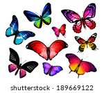 many different butterflies ... | Shutterstock . vector #189669122