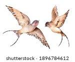 Watercolor Spring Flying...