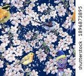 watercolor  different birds... | Shutterstock . vector #1896873895