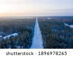 Aerial Winter Forest View In...