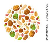 cartoon seeds and nuts. almond  ... | Shutterstock .eps vector #1896995728