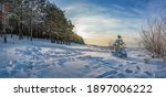 Panoramic view of winter landscape. Covered in snow trees against dramatic evening light. Snowy Baltic sea coast.