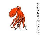 illustration of octopus in... | Shutterstock . vector #1897367638