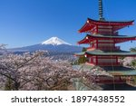 Mt. Fuji And Cherry Blossoms In ...