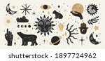 collection of mystical and... | Shutterstock .eps vector #1897724962