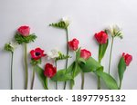 Red Tulips And Anemones With...