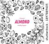almond nuts hand drawn sketch.... | Shutterstock .eps vector #1897889605