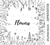 Hand Sketched Vector Flowers...