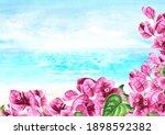 Pink Bougainvillea Branches...