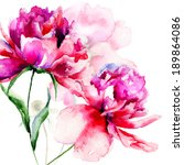 beautiful peony flowers ... | Shutterstock . vector #189864086
