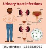 informative illustration of...   Shutterstock .eps vector #1898835082