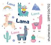 cute cartoon sticker lama set... | Shutterstock .eps vector #1899106702