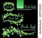 vector set of fresh green leaf... | Shutterstock .eps vector #189912632