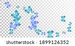 Fairy Blue Butterflies Flying...
