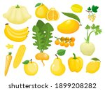 vector concept   eat colors for ... | Shutterstock .eps vector #1899208282