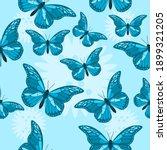 Beautiful Blue Butterfly Themed ...