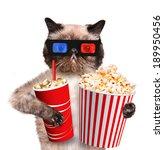 cat watching a movie | Shutterstock . vector #189950456