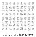 fruits and berries vector icons.... | Shutterstock .eps vector #1899549772