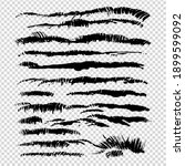 black abstract fur or grass... | Shutterstock .eps vector #1899599092