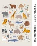 cute wild animals alphabet  ... | Shutterstock .eps vector #1899783652