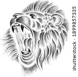 the vector logo lion for tattoo ... | Shutterstock .eps vector #1899857335