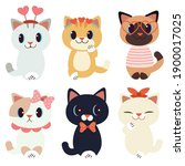 the collection of cute cat in... | Shutterstock .eps vector #1900017025