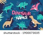 dinosaur names   flat design... | Shutterstock .eps vector #1900073035