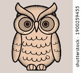 owl bird animated vector... | Shutterstock .eps vector #1900259455